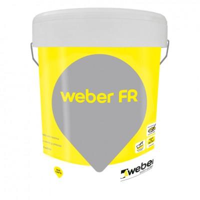 WEBER FR 2 KG